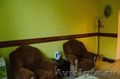 Гостиница в Барнауле с бесплатным питанием